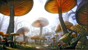 Floresta de Cogumelos